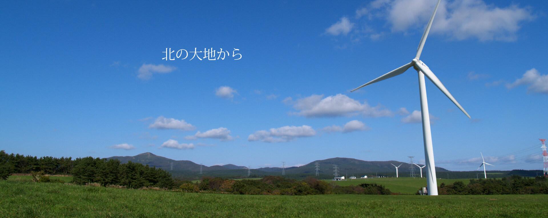 六ヶ所村内 風車